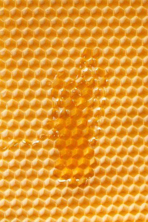 Verwendung von Bienenwachs in der Antike