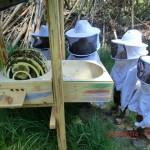 Heidinger Bienenkugel