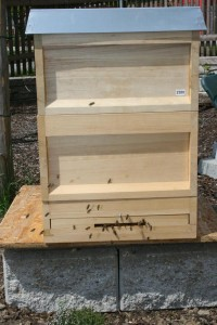 die erste Bienenbeute im Hausgarten