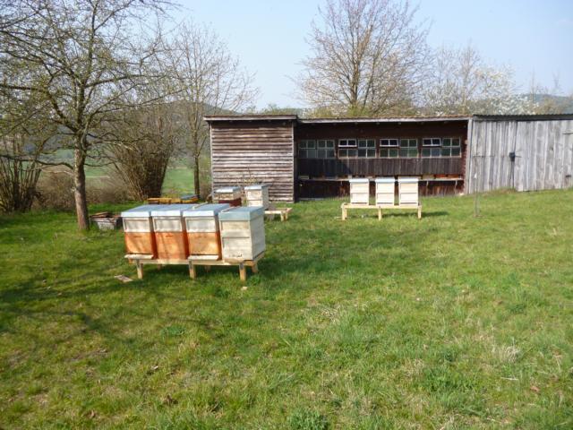 Bienenvölker