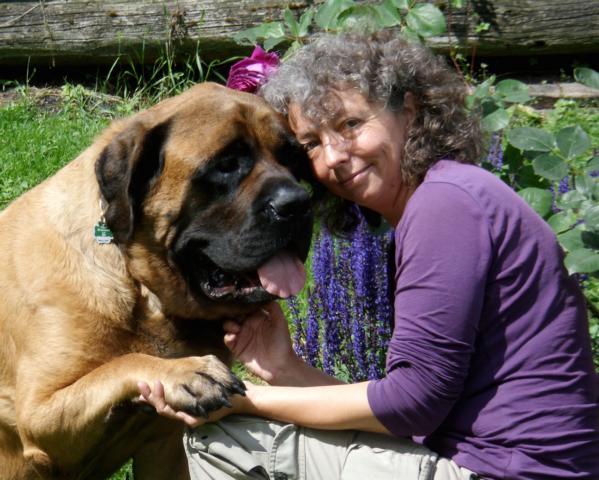 Tielheilpraktikerin und Hundephysiotherapeutin setzt Apitherapie ein