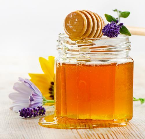 2014 bringt schlechte Honigernte