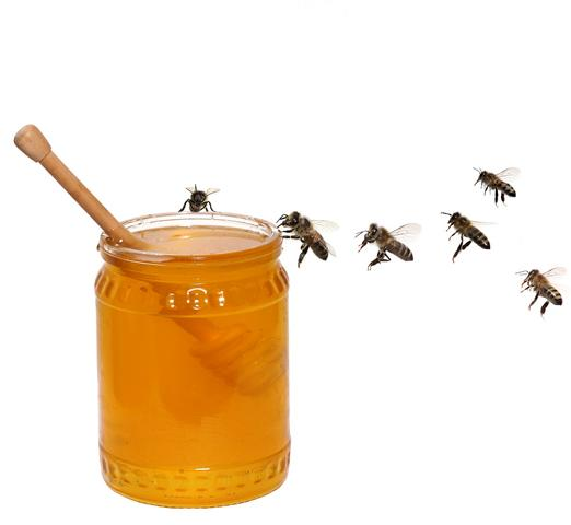 Flugstrecken, Bienen, Honig