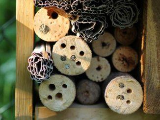 Insektenhotels und Nisthilfen für Wildbienen