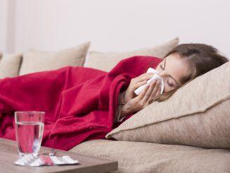 Vitalpilze - Helfer gegen Erkältung